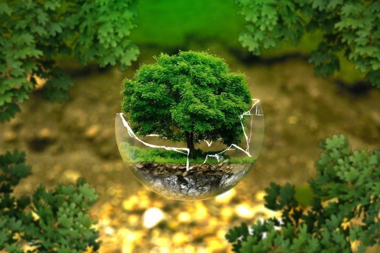 impression 3D ecologie